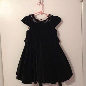 Biscotti Winter Collection Black Velvet Dress